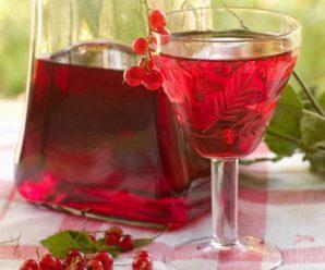 Вино из красной смородины: технология и рецепты