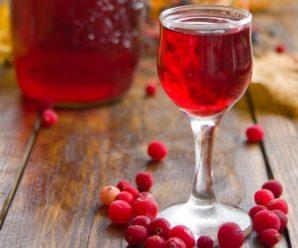 Домашнее брусничное вино: популярные и простые рецепты