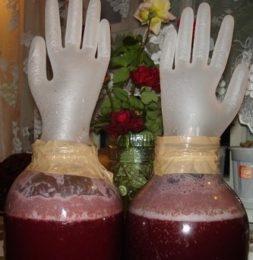 Сделать вино из брусники в домашних условиях 607