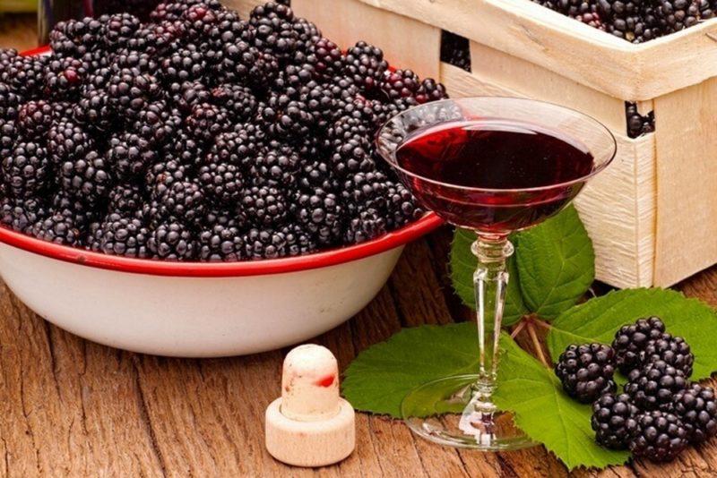 Рецепты вино из ежевики в домашних условиях