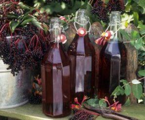 Приготовление оригинального и вкусного вина из черемухи: пошаговые рецепты