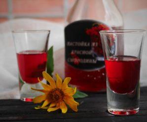 Настойка из красной смородины – изысканное украшение праздничного стола