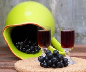 Терпкая, но вкусная настойка из черноплодной рябины: рецепты приготовления