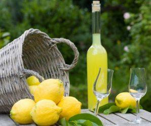 Вино из лимонов в домашних условиях: готовим вкусно и с пользой