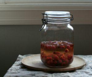 Настойка из шиповника: рецепты целебных напитков на основе крепкого алкоголя