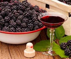 Технология приготовления ежевичного вина в домашних условиях